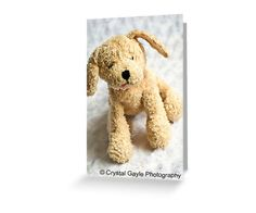Toddler Birthday Greeting Card Blank Note by CrystalGaylePhoto, $4.50
