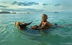 Photo by @amivitale. A boy swims with his zebu in the ocean outside the village of Nosy Be Madagascar. Building resilience in island nations and coastal communities is a key step in mitigating the effects of climate change. Follow me @amivitale for more stories from around the world.  #NatgeoEarthDay @natgeo @natgeocreative @thephotosociety #climatechange #conservation #natureisspeaking #savetheplanet #madagascar #zebu #photooftheday #photojournalism #amivitale by natgeo