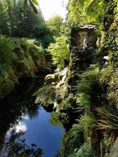 Tollymore Forest Park, Ireland