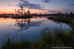 Morning in the Bog, Estonia, August 2014 by Jaak Sarv on 500px.