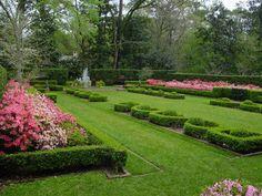 Hedge trimmed landscaping.