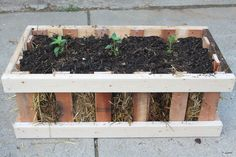 The Straw Bale Pallet Crate Garden - Simple, Attractive - And Cheap!