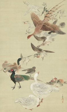 Birds. Main detail of a hanging scroll; ink and color on silk, about 1820's, Japan by artist Tanaka Nikka. MFA