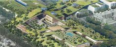 The world's largest green roof is being built on top of an old Silicon Valley mall
