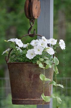 Petunias and vines in an old bucket hanging from an old hoist.