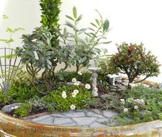 Miniature Gardening at Sorticulture