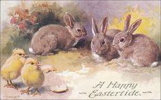 Vintage Easter Post Card,  Brown Easter Bunny watches Chicks postcard, Easter vintage postcard, Easter Chicks postcard by sharonfostervintage on Etsy