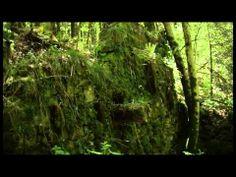 Pozabljen čas - dokumentarni film (zaključna naloga) - http://filmovi.ritmovi.com/pozabljen-cas-dokumentarni-film-zakljucna-naloga-2/