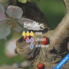 Bee Sting — Essential Oil Diffuser Blend
