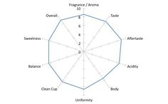 interesting reflection on why radar charts aren't the best option for cupping scores Radar Chart, Scores, Line Chart, Charts, Reflection, Fragrance, Coffee, Kaffee, Graphics