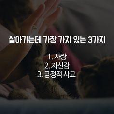 인생에서 중요한 3가지 슈퍼 정자를 만드는 5가지 음식 컴퓨터에서 반드시 삭제해야 할 프로그램 A to Z 2300년 전 '한비자'가 말하는 나라가 망하는 징조 10가지 혜민스님이 전해주는 삶의 10가지.. Wise Quotes, Art Quotes, Sentences, Cool Words, Life Lessons, Korean Language, Life Hacks, Summary, Knowledge