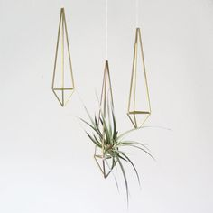 Amazing way to display airplants!  Brass Himmeli Prism no. 1  / Hanging Modern Mobile / by HRUSKAA, $19.00