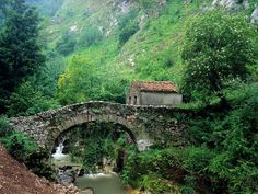 What can be better than a picturesque mountain landscape in Spain with a small forest house between high trees and above the mountain river. Fresh mountain air, green trees and nothing Landscape Wallpapers, Bridge Wallpaper, Hd Wallpaper, Stone Cabin, Old Bridges, Asturias Spain, Over The River, Forest House, Old Stone