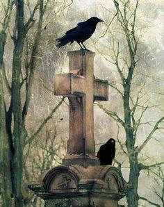 Two Graveyard Crows Art Print by The Strange Days Of Gothicrow Crow Art, Raven Art, Old Cemeteries, Graveyards, Crows Ravens, Cemetery Art, Foto Art, Belle Photo, Dark Art