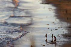 Great Tilt-Shift of the Beach