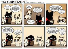 Gamer Grumps #thegamercat #grumpycat