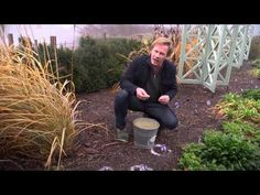 Epsom Salts for the Garden   At Home With P. Allen Smith, will be trying this on my tomatoes and my flowers too -----@
