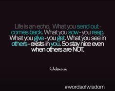 #wordsofwisdom