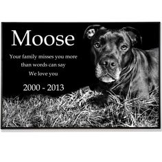 Our popular Granite Photo Pet Grave Marker that are thick and engraved with your pet's photo and special message. Visit Memorial Gallery Pets to learn more and view testimonials. Pet Headstones, Cat And Dog Memes, Pet Grave Markers, Memorial Markers, Buy A Kitten, Granite, Your Pet, Cute Animals, Memories