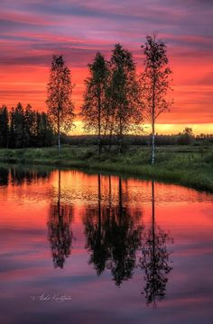 """Red Night by Asko Kuittinen"" Bellisima, Beautiful World, Finland, Country Roads, Sky, Sunset, Night, Places, Artwork"