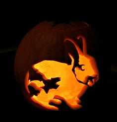 Obsessed bunny mom carves pet rabbit into pumpkin. Rabbit Halloween, Halloween Bats, Halloween Pumpkins, Happy Halloween, Halloween Decorations, Halloween 2017, Halloween Ideas, Pumpkin Carving Party, Pumpkin Carving Patterns