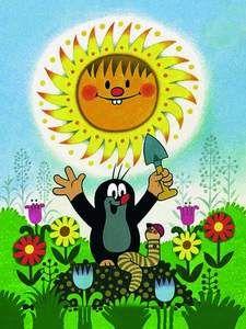 Summer Sunshine :)