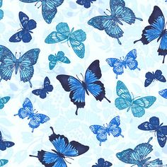 Butterfly Grotto - Porcelain Wings-Quilt Fabrics from www.eQuilter.com