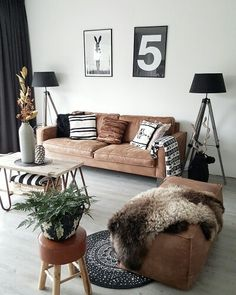 Zwart wit bruin