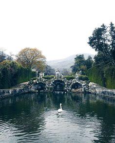 """[#JSHexperience] """"Uno dei giardini più belli che abbia mai visto. Un #parco dove regnano la pace il silenzio e i #cigni."""" by giuliotolli"""