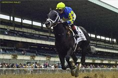 Breeders' Cup Juvenile champion Shanghai Bobby came out of the March 30 Florida Derby with a pelvic stress fracture, co-owner Starlight Racing announced Thursday. Dr. Larry Bramlage estimated the colt would need about three-months rest before resuming training, but he said Shanghai Bobby would make a full recovery. Before discovering the stress fracture, Shanghai Bobby's connections had decided he should take some time off before resuming a late summer/early fall campaign.