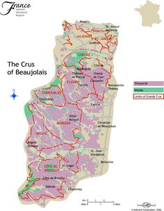 how to find classic beaujolais wines