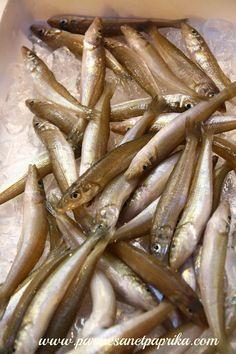 #Tokyo #FishMarket Quelques jours au Japon: Tokyo, le Marché aux Poissons de Tsukiji (築地市場)
