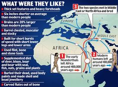 Experts believe that Neanderthals and modern humans shared a common ancestor in Africa. Around years ago early Neanderthals left Africa and headed for Europe and Asia. However, our ancestors stayed behind, and evolved into modern humans. Charles Darwin, Early Humans, Human Evolution, We Are The World, Prehistory, Historical Maps, African American History, Ancient Civilizations, World History