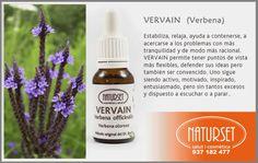 #Vervain #estabiliza #relaja ayuda a contenerse a acercarse a los problemas con más #tranquilidad y de modo más racional. #FloresdeBach de #NatursetVERVAIN - Flores de Bach de NATURSET - Salut i Cosmética