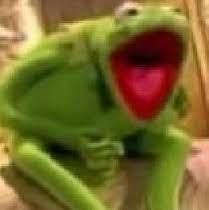 Image result for kermit freaking out