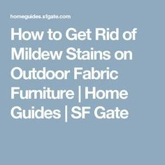 How to Get Rid of Mildew Stains on Outdoor Fabric Furniture Mildew Stains, Mildew Remover, Remove Mold, Cleaners Homemade, Outdoor Fabric, Natural Living, Gate, Pasta Dishes