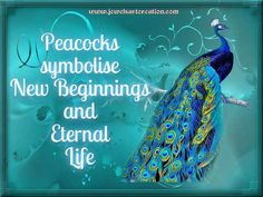 "Why am I drawn to ""new beginnings"" symbols?"