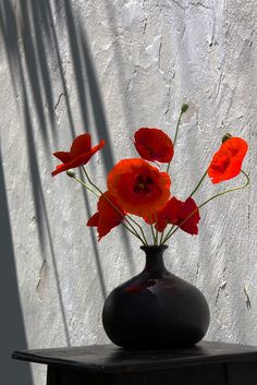 Red by Rucsandra Calin on 500px