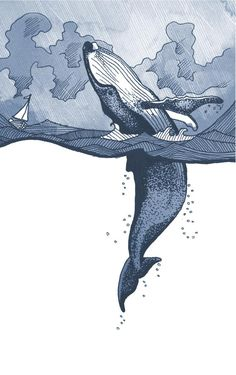Hump Back Whale breaching in Stormy Sea with boat illustration. Wall art giclee print in Size. whale, sea, ocean, whale watching Magnificent Hump Back Whale illustration, with watercolour washed stormy skies. This is a reproduction of the origi Whale Art, Whale Illustration, Animal Art, Sketches, Art Drawings, Drawings, Illustration Art, Art, Illustration Wall Art