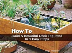 Don't have lots of space for a water garden? Here is a beautiful pond-in-a-box alternative. To make one yourself, just follow these four easy steps from Lowes Creative Ideas. Details and plans at the link below… Build A Deck-Top Pond Protect Your Family From Toxic Products and Medications... Begin with this life changing eBook where …