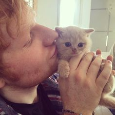 Ed is quite possibly the world's biggest cat lover.