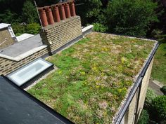 Image result for green flat roof garden