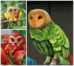 Awesome Food Art: Owl Theme Food Art