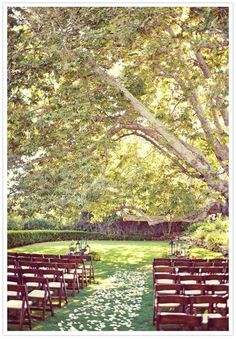 my ideal wedding location(something like that would be cool)