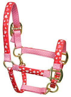 Red Haute Horse - Red Hearts High Fashion Horse Halter, $30.95 (http://www.redhautehorse.com/red-hearts-high-fashion-horse-halter/)