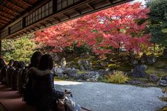 Entoku-in est un temple secondaire du Kôdai-ji qui se situe dans le quartier Higashiyama. Ses jardins sont réputés pour la période automnale et printanière. #Kyoto #Entokuin