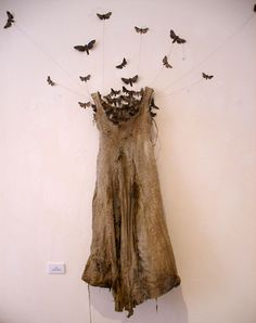 The Moth Dress by Louise Richardson