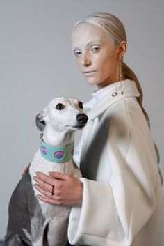 NEW! The Nebula Hound Collar by Hiro + Wolf is designed specifically for small and large hounds including Italian Greyhounds, Whippets, Greyhounds and Lurchers.