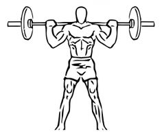 File:Wide stance squat with barbell Leg Workouts For Mass, Best Leg Workout, Leg Training, Strength Training Workouts, Compound Leg Exercises, Squat Lift, Mass Building, Legs, Exercises