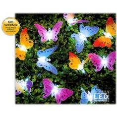 12 Solar Powered Fibre Optic Multicoloured Butterfly Ligh... https://www.amazon.co.uk/dp/B00C3R39EM/ref=cm_sw_r_pi_dp_dNDpxbF03VSW2